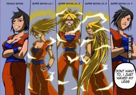 Femal Super Saiyan. yup.. were these 2 ever officials? dbz DBgt super saiyan