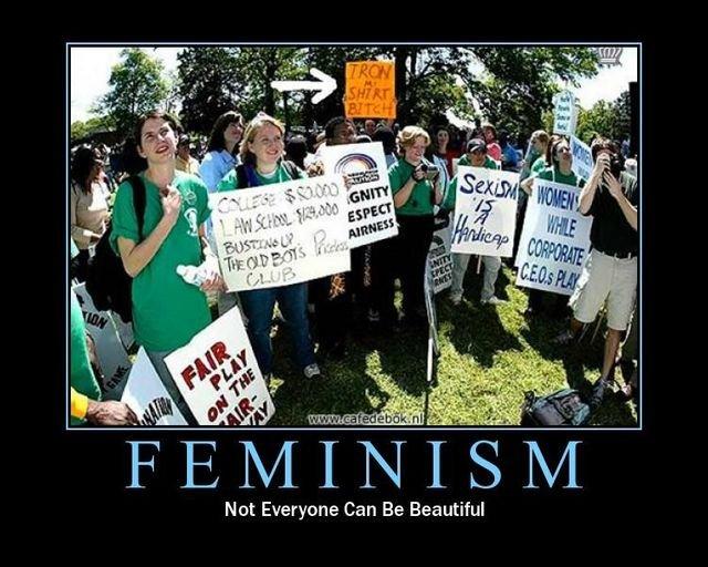 Feminism. . J? sail Not Everyone Can Be Beautiful FEMINISM