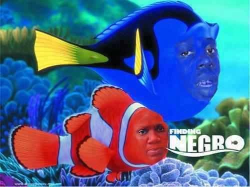 Finding Negro. . Finding Nergo