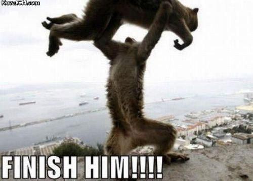 FINISH HIM. fatality.. Animality!