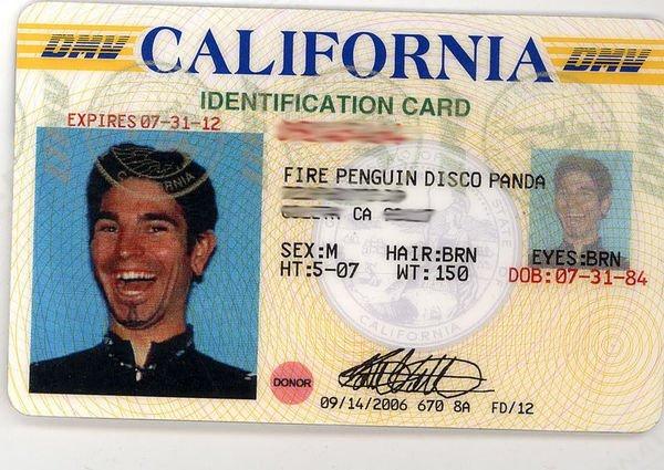 Fire Penguin Disco Panda. . I / -At' CALIBORN Roii. PENGUIN. DIESER ' It was an Itll Bit HT: ISSE
