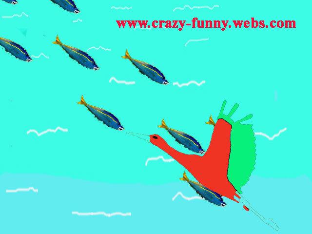 fish attack. .
