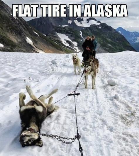Flat tire in alaska. .. Spare tire in Alaska