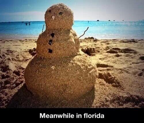 Florida+be+like_8bf30f_4923555.jpg