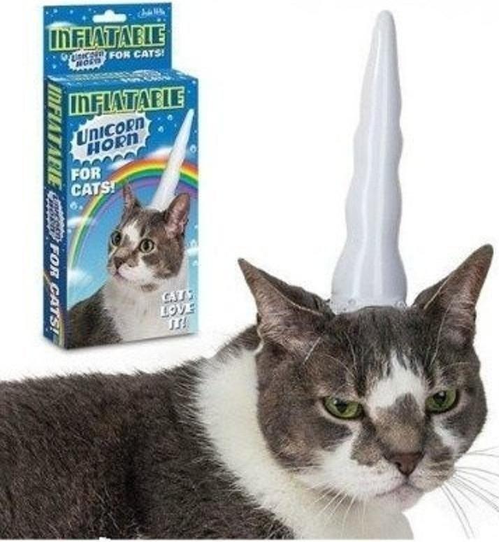 for those hardcore cat bronies. .