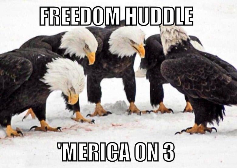 Freedom huddle. Source: Imgur.