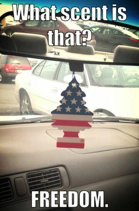 Freedom. .. Smells like hamburgers and used bullets.