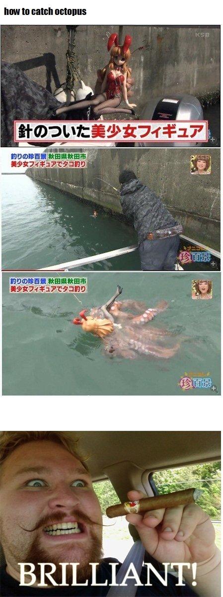 fuck yea japanese. tentacle rape of course. MI! III Ell Illia E TE? anagram hentai tentacle Rape Hardcore