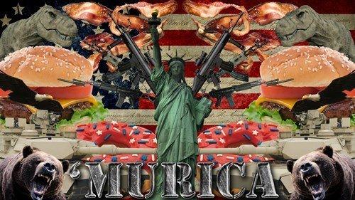 Fuck Yea!. . Murica america land of the free