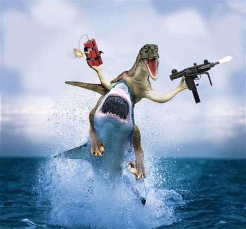 FUCK YEAH!. . trex Shark