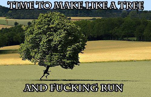 fucking run. . Itll strict LIKE, Al Eliq. RUN FOREST, RUN! Boobs funny complation lol top ten