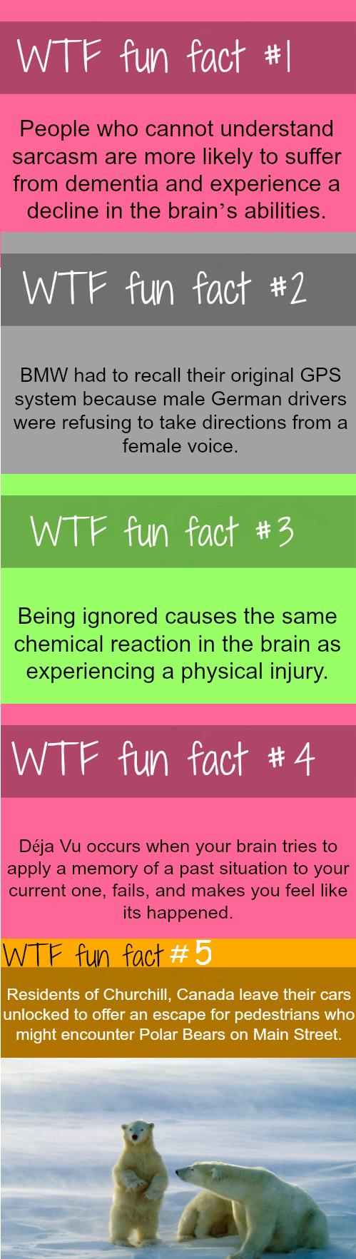Fun fact. .. MFW #1