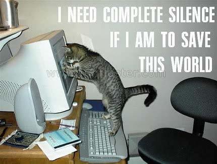 Funny Cat. Fan. Funny Cat. Fan. Funny Cat Fan
