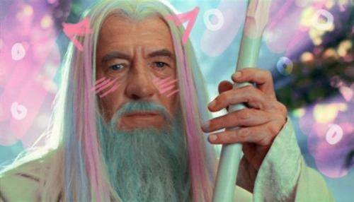 "Gandalf The Kawaii. .. ""I-it's not like I want you to pass, Baka!"""