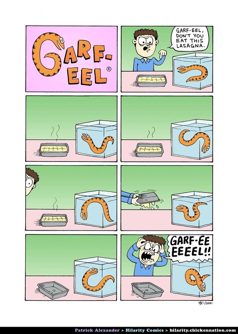 garf eel. lol i dunno.. That eel is orange... garf eel