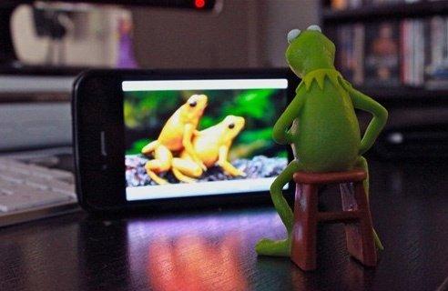 gettin froggy. .