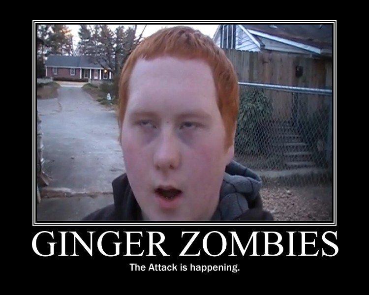 Ginger_c133ed_279896.jpg