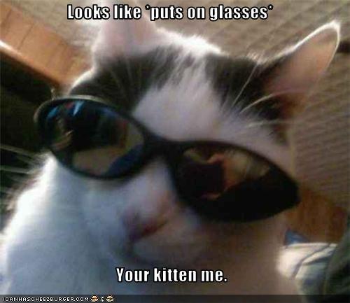 Glasses cat. Looks like puts on glasses. Your kitten me. glasses