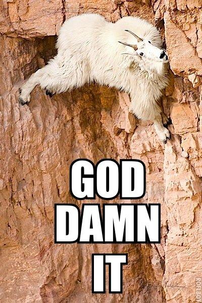 God Damn It. Poor Goat.. GOD RAM IT!
