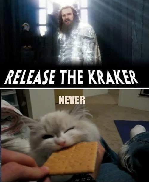 Godammit realese the flipping cracker!. . THE V. NEVER