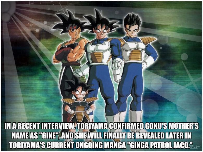 Goku's Mom. Source: www.kanzenshuu.com/forum/viewtopic.php?f=7&t=26195.. I thought it was Celepa?
