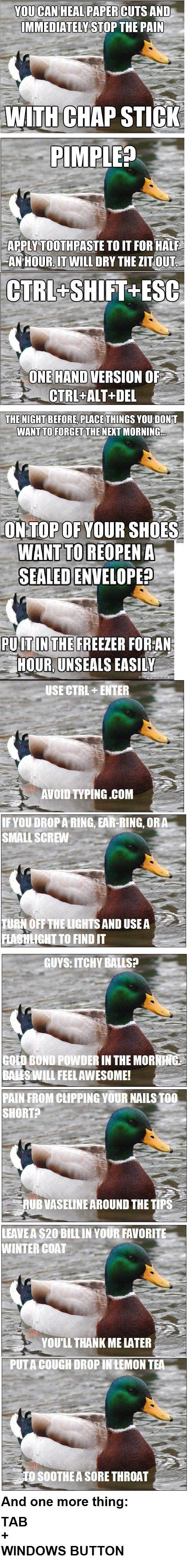 Good Advice Duck Comp. one two three four five by the way I meant windows plus tab. sri/ ici/ iii: rri' iip nai) VIII! M if UH Ni Emu Blurs I; IPI' Illa Yuk NAI