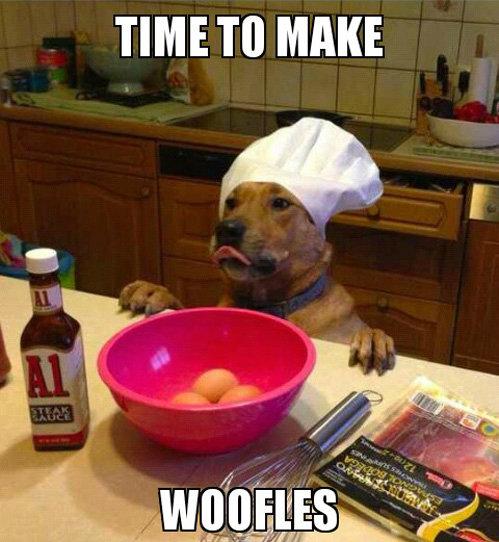 Good dog. . TIME TO MAKE