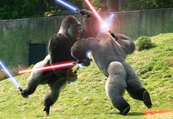 Gorilla Warfare.. .