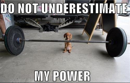 Got Power?. .