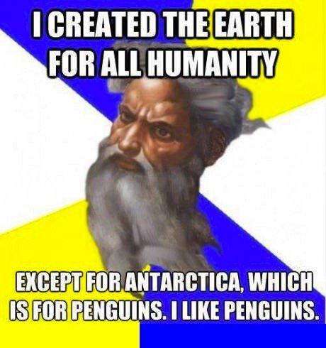 Gotta love them penguins.. .