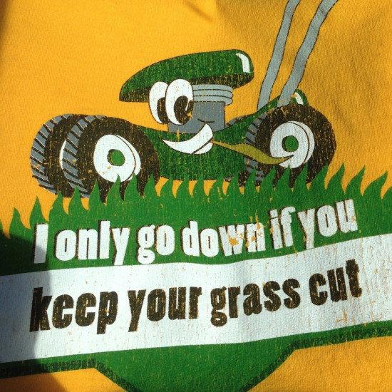 grass. .