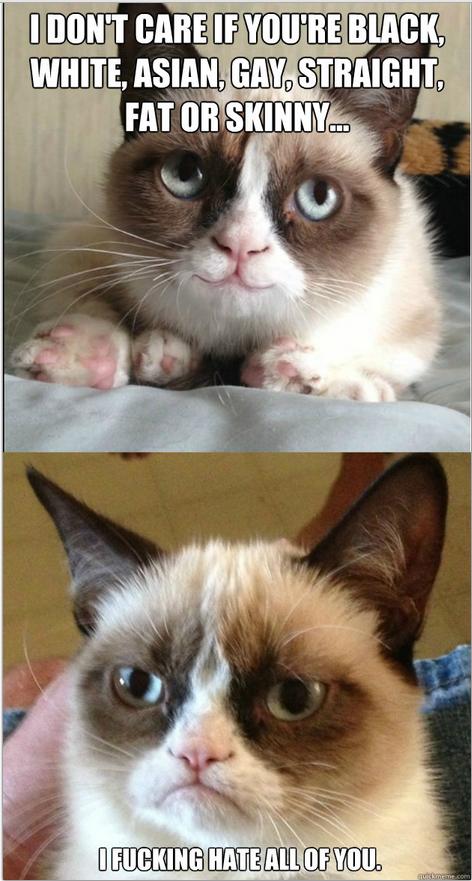 Grumpy Cat Don't Give No Shits.. Grumpy cat.... yup..