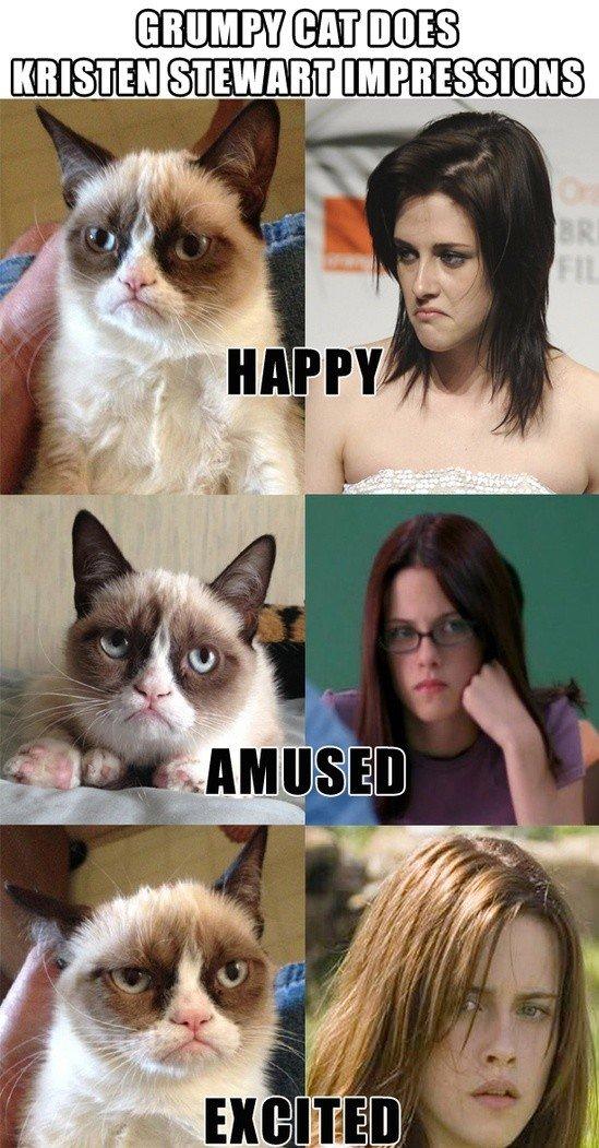 grumpy cat does impression. .. BAHAHAHAHA