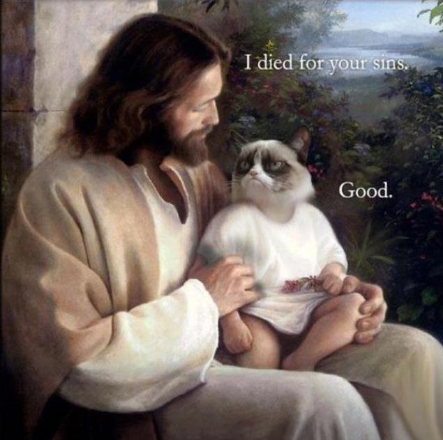 Grumpy Cat Meets Jesus. .. maybe
