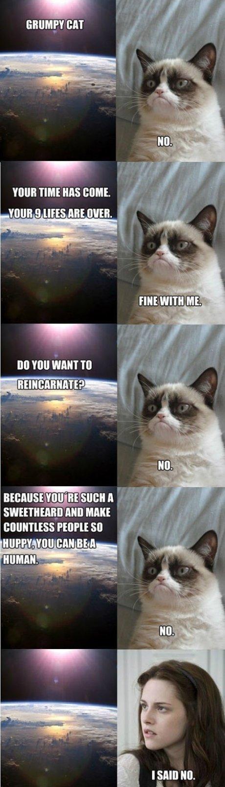 grumpy cat. . TIME MS dmit. VINE g HHS ME HIKE. TIMI HINT TO kirill alum mm FE[ Ipl. £ so alt. Sweetheard?