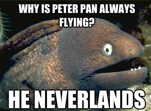 ha. ha ha.. . WHY IS PETER ml EWING? Ex M