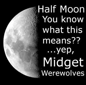 "Half moon. Not OC, but I lol'd. ltr.. Half Moon Ier"" what this means? Midget Werewolves"