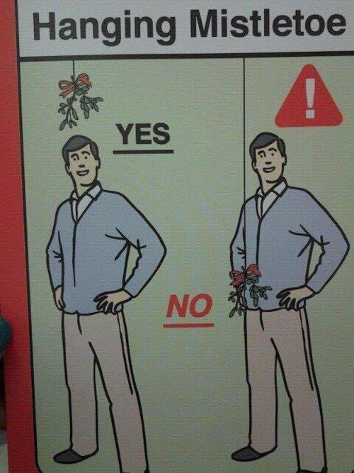 Hanging the mistletoe. . angina Mistletoe. YES