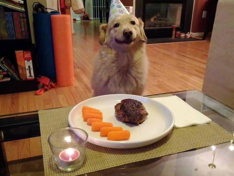 Happy birthday Dog. :3.. The recession hit Chuck Testa pretty hard. The man's gotta find some way to eat.