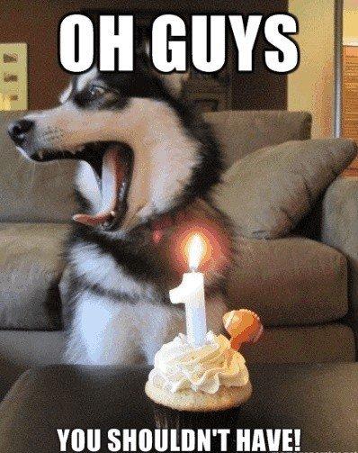Happy Birthday!. Hi.