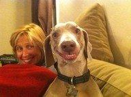 happy happy happy!. oh god he is happy. happy Dog