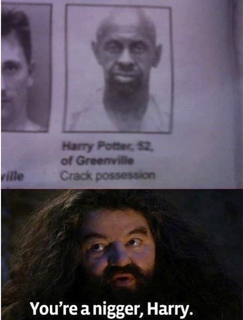 Harry Potter. .