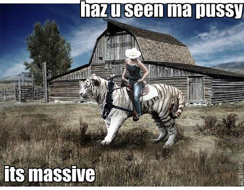 haz u seen ma pussy. haz u seen ma pussy. hill Ill s Ben. can i pet your pussy? haz u seen ma pu