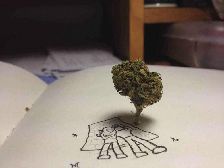 Heightened Creativity. .