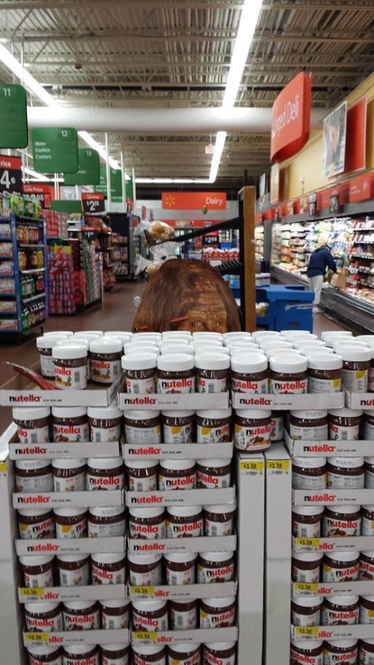 Hey Buddy!. You buying some Nutella?. nutella