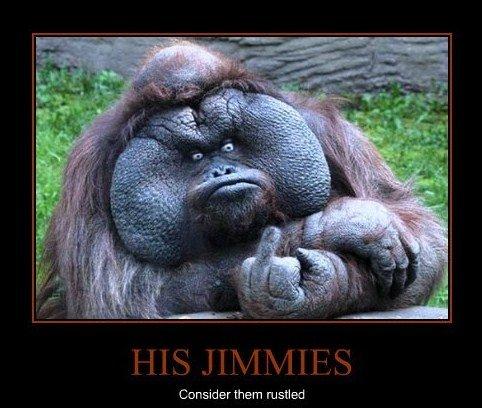 His jimmies. . misled. rustled thread...
