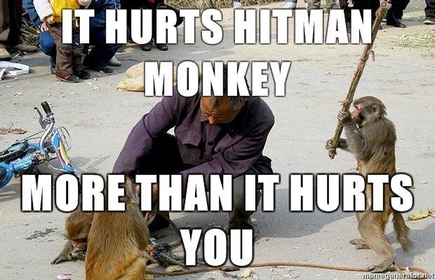 Hitman Monkey. .