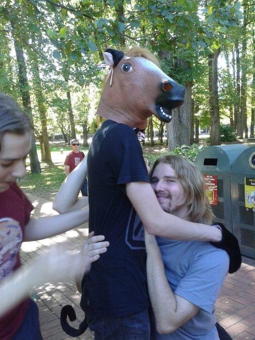 horse head mask. horse head mask. horse head mask