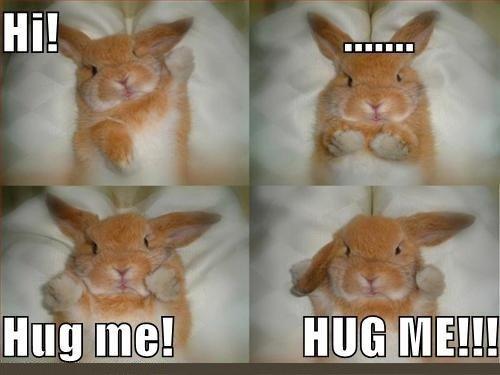 Hug me!. .