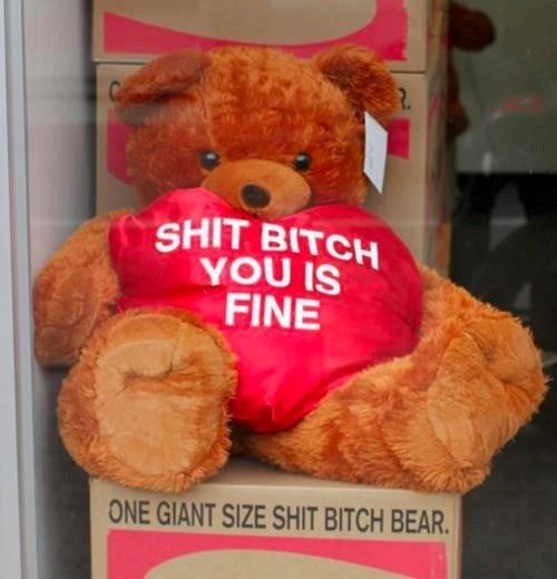 i gave that bitch a teddy bear. bitches love teddy bears.